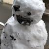 大雪警報の出た週末。子どもは喜び庭駆けまわる!