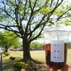 山形村【月と群青と珈琲と】テイクアウトでワンコとピクニック