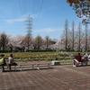 荒子川公園 2020.4.7