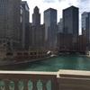 【シカゴ・トロント】海外出張のオマケでシカゴとトロントを現地視察!