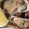 【牡蠣好き必見】今まで食べた牡蠣の写真をひたすらあげてく