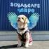 """ドッグカフェ【SOBA&CAFE""""sanpo""""】でランチ・2021夏の信州⑥"""
