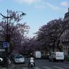 欧州へ。§3パリ編 Part50 凱旋門の周辺