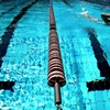 水泳(競泳)リオオリンピック 日本代表の結果速報・順位・メダルまとめ