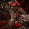 群馬県 榛名神社拝殿の龍たち