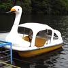 【諏訪湖発】スワンアスロン!!スワンボート×トライアスロン夢のコラボ