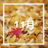 【月間カラダ予報11月】暦は冬へ、カラダは軽め、精神は深く