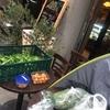 岡山からの野菜