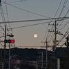【茨城県を堪能する】広さを感じる