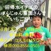 6月6日(火)2時から、回帰水イチゴのイチゴ狩り。希望者はご連絡ください。