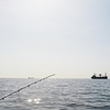 GWは釣りでメゴチ祭り!