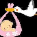 3人目で女の子の産み分けに成功したワーママの妊活・妊娠・子沢山主婦におすすめのブログ