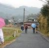 桜苗配布と小雨の中のウオーキング
