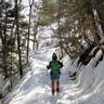 低山登山・ハイキング