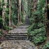 【和歌山】信仰の道 世界遺産「熊野古道」を歩く(2日目②-大門坂~熊野那智大社、那智滝)