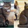 給料も受けず、6年間スーパーに出勤した猫を記念するために銅像を建立した?
