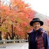 日本 背景は先人からの贈り物