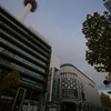 2010 京都紅葉前線レポ 11月26日