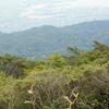 下見   六甲山森林浴ハイキング