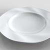 波打った皿のモデリング