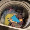 洗濯機に騙されていたハヨネコ
