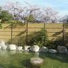 【三重県 / 湯の山温泉 / 湯の山グリーンホテル】春にこそ行きたい。お花見風呂が楽しめる湯の山温泉