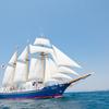 【日本唯一、一般の方が乗れる帆船で新入社員研修!】帆船で長崎を目指せ!