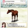 【ダビマス】繁殖牝馬 エメラルドマサキ編