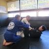日曜日自主練習、月曜日フルタイムキッズ柔術クラス、一般柔術クラス。