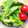 自然耕房あおき 京都京丹後市 自然栽培 無農薬 オーガニック 野菜販売