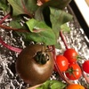 むらさき色のトマト