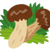 アメリカ在住の妹の日本語【松茸の数え方】