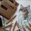 完成】100均セリアの『にほんの色鉛筆』で猫のページを塗ってみた☆おとニャーの塗り絵ノートより