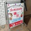 高田馬場のボードゲームカフェ『GOTTA2 CAFE』訪問レポート