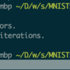 Swift for TensorFlow で MNIST を実行する