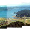 青海島の植物の実、生島を通る瑞風