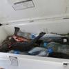メバル、アジ、カマスなど手軽な海のルアー釣りで使いやすいクーラーを買うのだ