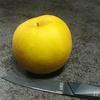 赤梨×青梨で激甘! 鳥取県産 希少品種「新甘泉」を食べる! 贈り物に最適