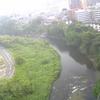 広瀬川と定禅寺通り