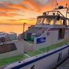 乗合船でアジのビシ釣りに挑戦。船釣り初心者の自分が最初に覚えたルール・マナーと持ち物についてのまとめ