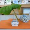 とある学校の図書館(トトロの雨宿り)