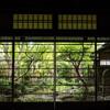 ゲストハウス 鯉屋に泊まる 京都歩き(2)