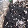 ミミズの排泄物の、相当良質な肥料になると聞きました。ミミズさんの排泄物をビジネスになるくらい集めるにはどうすればいいのだろう?