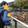 【東伊豆観光】赤ちゃんも楽しめる観光スポット3つ!