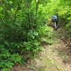 ◆6/18     倉沢登山口から摩耶山へ③…ソリクラコース~山頂
