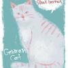【ドイツ】猫ブーム到来 デュッセルドルフ初のネコカフェに行ってきた!