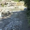 石鎚山に行ってきました