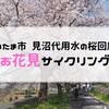 さいたま市 見沼代用水(西縁)の桜回廊でお花見サイクリング