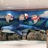 2020年沖縄美ら海水族館の状況レポート。5年振りの再訪で変わっていたことをレポート