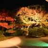 秀吉の妻ねねが晩年過ごした場所「圓徳院」を紹介 (Kyoto,Entoku-in)
